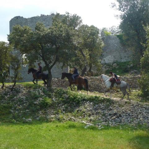 cheval-balade